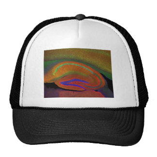 Hippocampal neurons 3 trucker hat