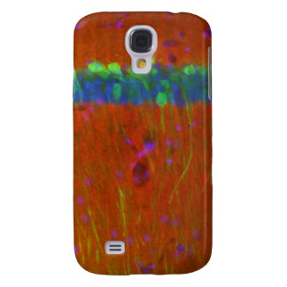 Hippocampal neurons 4 galaxy s4 case