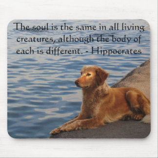 Hippocrates Animal Rights Quote Mouse Pad