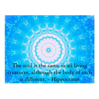 Hippocrates Animal Rights Quote Postcard
