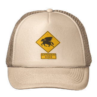 Hippogriff XING Mesh Hats