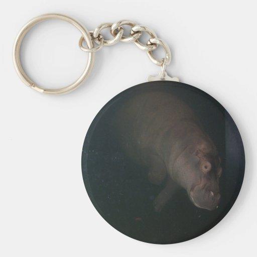 Hippopotamus Abstract #4 Key Chains