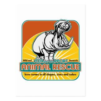 Hippopotamus animal del rescate postales