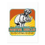 Hippopotamus animal del rescate tarjeta postal