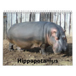 Hippopotamus Calendar, Hippopotamus