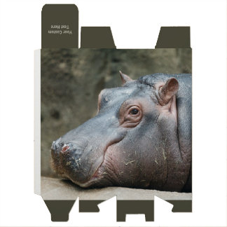 Hippopotamus custom wine gift box