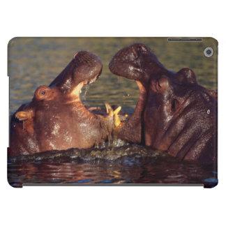 Hippopotamus (Hippopotamus Amphibius) Bulls iPad Air Case