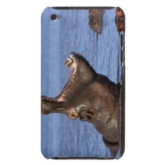 Hippopotamus (Hippopotamus amphibius) in the Case-Mate iPod Touch Case