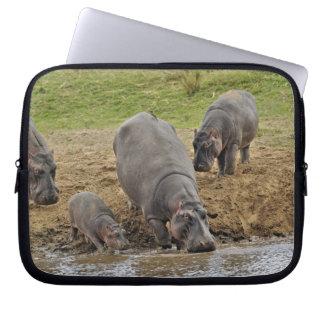 Hippopotamus, Hippopotamus amphibius, Serengeti Laptop Sleeves