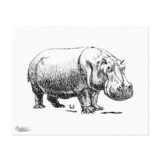 Hippopotamus Impresión En Lienzo Estirada