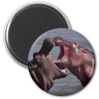 hippopotamus fridge magnet