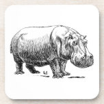 Hippopotamus Posavaso