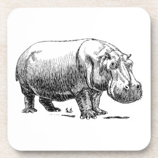 Hippopotamus Posavasos