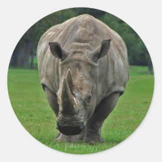 Hippopotamus stickers