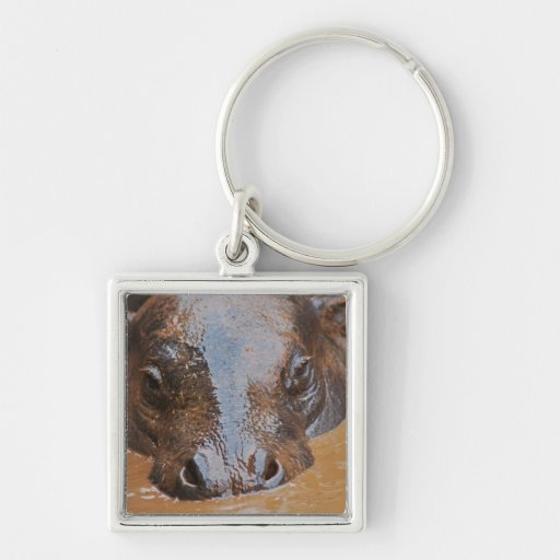 Hippopotamus swimming Silver-Colored square keychain