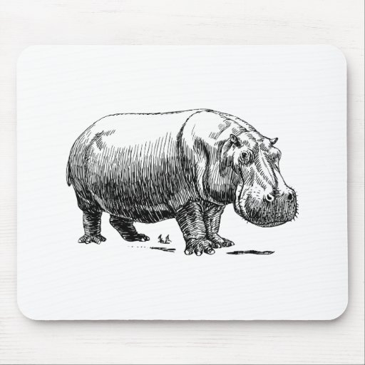 Hippopotamus Tapetes De Ratón