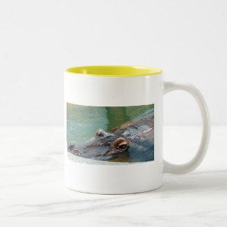 Hippopotamus Two-Tone Coffee Mug