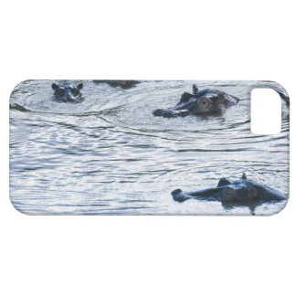 Hippopotamuses wading in a river, Africa iPhone SE/5/5s Case