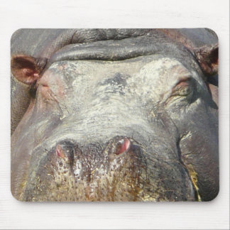 Hippo's Nose Mouse Pad