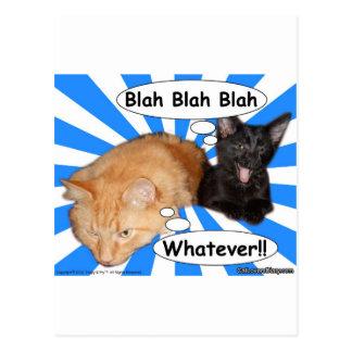 Hippy Kitty Blah Blah Blah Whatever Post Cards