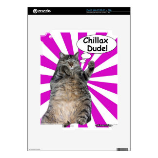 Hippy Kitty Chillax Dude! Decal For iPad 2