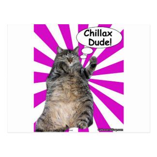 Hippy Kitty Chillax Dude! Postcard