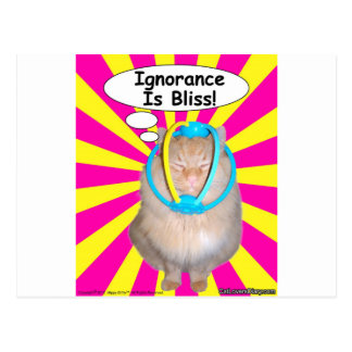 Hippy Kitty Ignorance Is Bliss! Postcard