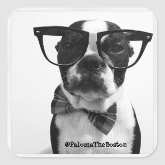 Hipster Boston Terrier with Glasses Stickers