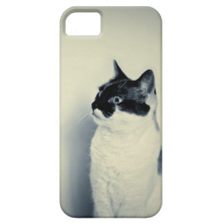 Hipster Cat iPhone 5 Case