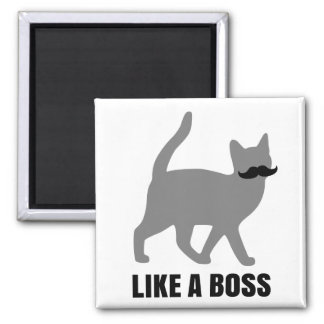 Hipster Cat like a boss Magnet