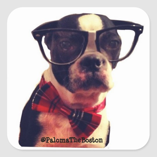 Hipster dog with glasses! square sticker