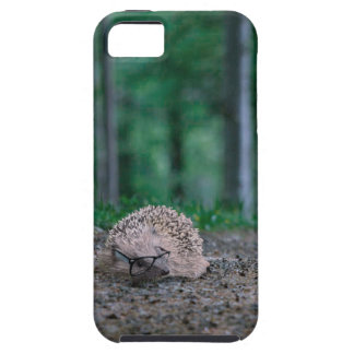 Hipster Hedgehog iPhone 5 Cases