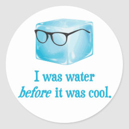 Hipster Ice Cube Was Water Before It Was Cool Classic Round Sticker