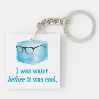Hipster Ice Cube Was Water Before It Was Cool Keychain
