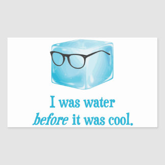 Hipster Ice Cube Was Water Before It Was Cool Rectangular Sticker