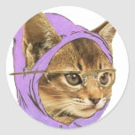 Hipster kitty round sticker