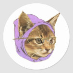Hipster kitty round stickers