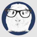 Hipster Pigster Classic Round Sticker