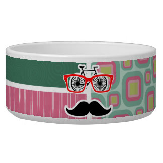 Hipster Pink and Mint Retro Mustache Dog Water Bowl