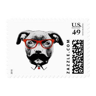 Hipster Pit Bull Terrier Stamp