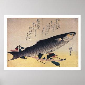 Hiroshige - salmonete gris y camelia póster