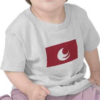 Hiroshima Prefecture Flag Tee Shirt