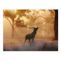 Hirsch beautiful nature scenery postcard