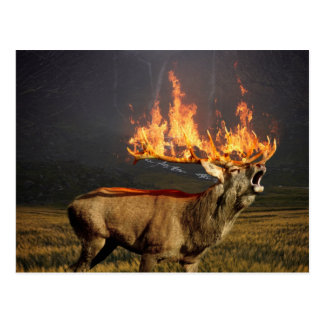 Hirsch with Horns on Fire Fantasy Art Postcard