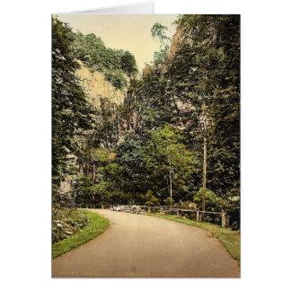 Hirschsprung, bosque negro, Baden, obra clásica de Tarjeta