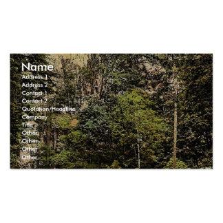 Hirschsprung, bosque negro, Baden, obra clásica de Tarjetas De Visita