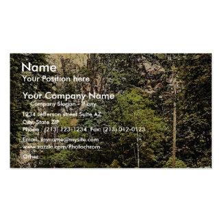 Hirschsprung, bosque negro, Baden, obra clásica de Plantilla De Tarjeta Personal