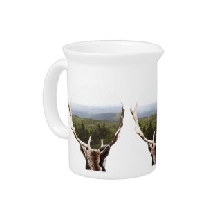 His Domain Drink Pitcher