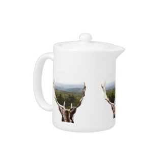 His Domain Teapot