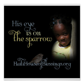 His Eye is on the Sparrow Poster